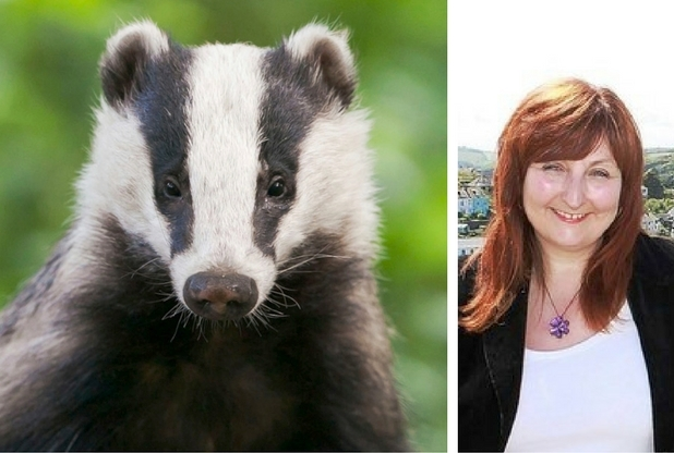 badger-and-edwina